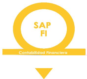 Banner SAP FI